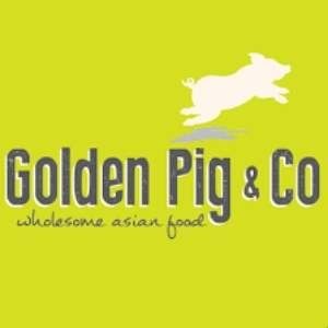 Golden Pig and Co