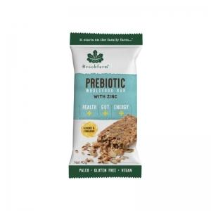 Brookfarm - *NEW* Almond & Cinnamon Prebiotic Bar 12 x 40g (Carton) (1300-12)